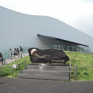 クラゲの水族館