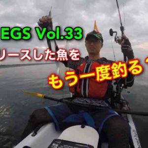 カヤック釣行No.110(yas&oga)リリースした魚をもう一度釣るだと?(゚Д゚)ハイ?