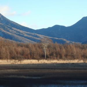 小田代原・幻の湖と貴婦人から高山へ