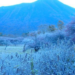 霧氷が始まった戦場ヶ原!