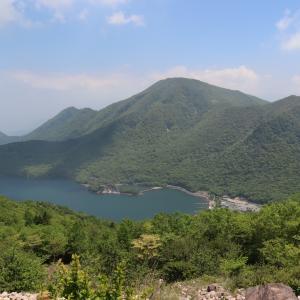 [赤城山]地蔵岳・他(クリンソウ・シロスミレ・サクラスミレ)