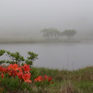 [赤城山]朝靄に包まれる覚満淵