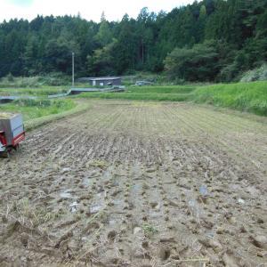 稲刈り、完了