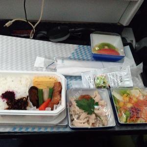 【ANA機内食 羽田→KL】ボリュームが少ないからディスカウントしてくれないかなぁ?