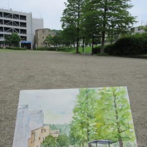 今日の水彩画~メタセコイヤのある公園~