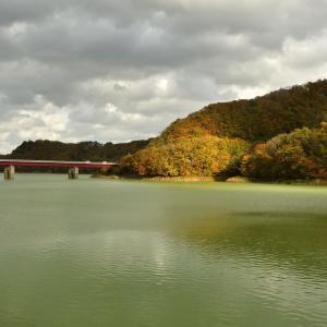 入畑ダムの紅葉も見頃を迎えていました。