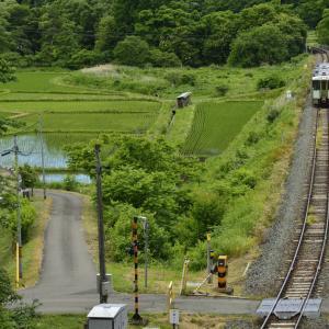 ローカル線で鉄道写真撮ってみました。