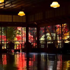 今シーズン最後の紅葉鑑賞は南昌荘でした。