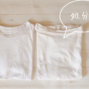 秋も、白Tシャツ2枚で制服化。