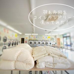 羽毛布団を丸洗いしてみた+タオルケットを処分。
