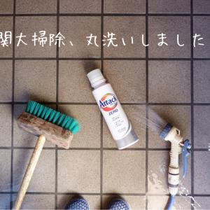 玄関とベランダを、水洗いして大掃除。