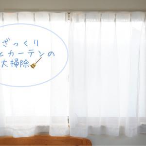 ざっくりと、窓とカーテンの大掃除。