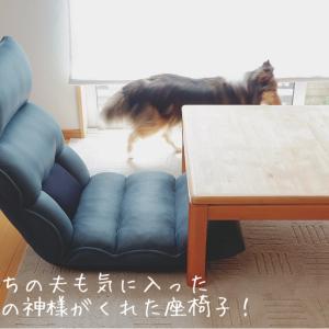 腰痛持ちの夫も気に入った「腰の神様がくれた座椅子」。