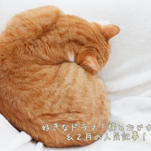 好きなドラマ「猫とおじさま」&2月の人気記事