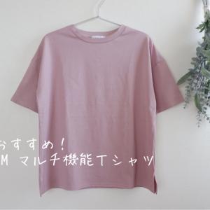 夏におすすめ!くすみカラーのTシャツを投入(PRあり)