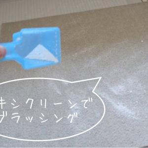 オキシクリーンで、カーペットのシミをきれいに。