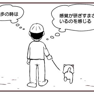超感覚ゾーンへ