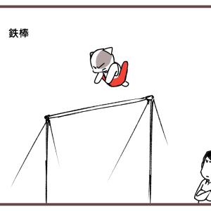 体操 男子個人総合