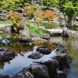 けいはんな記念公園の心に残る風景!・・・谷あい 水景園 小さな滝