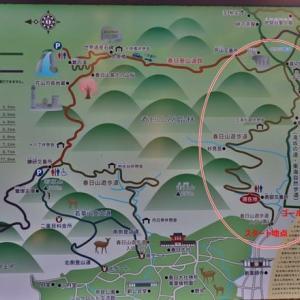 春日山原始林を軽ハイキング(往路)!・・・奈良公園 春日山遊歩道 愛犬小春