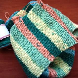 編み物と洋蘭