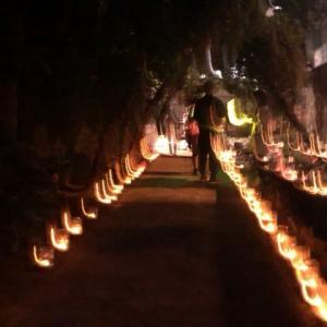 今年も行ってきた!散歩しながらせせらぎ公園の「灯篭祭り」へ