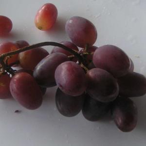 忘れかけたときに、このブドウ「紫苑(しえん)」
