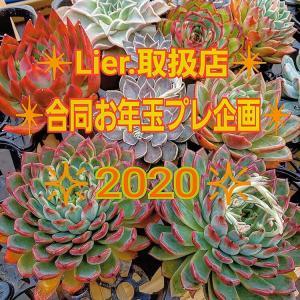 Lierお年玉プレ企画2020がスゴいです。(^^)