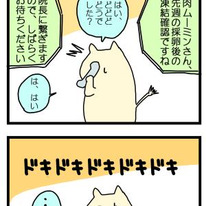 【4コマ】いよいよ☆凍結確認