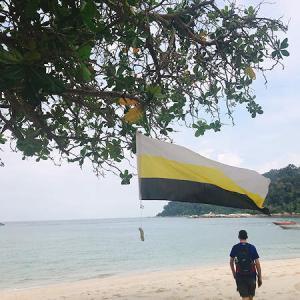 自然災害は少ないマレーシア、でも海の浅瀬にいる生き物で、こんなふうに大変になっちゃうかも?!