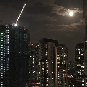 満月ゆるゆるっと、今年最後のまあるいお月さま。