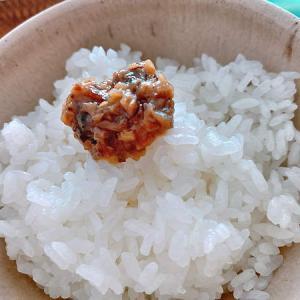 【海外生活】お米比べ:日本のコシヒカリと韓国米