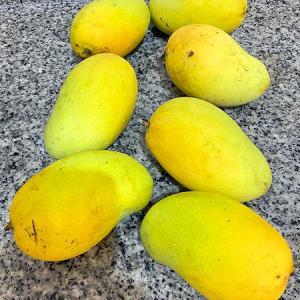 失敗!検問で引っかかったのと、マレーシア一美味しいマンゴー。