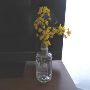 こんな時だからこそ、部屋に花を飾ってみた。花を飾るなんて、いつぶりだろう。