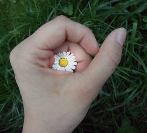 健康で美しいすっぴん爪の育て方、まとめ。