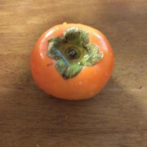 柿を皮ごとまるかじりがマイブーム。皮ごと?!と驚かれるけれど、栄養あるんです。