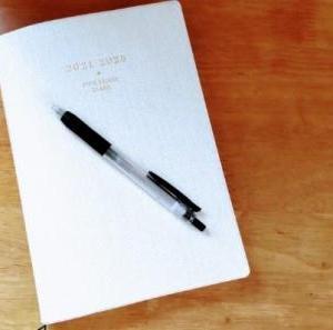 人生ではじめて日記(5年日記)をつけだしてから半年の覚書き。