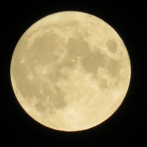 8月の満月は「スタージャンムーン」と呼ばれています