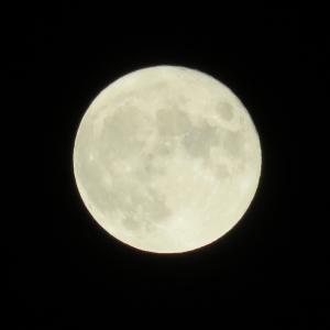 十五夜と中秋の名月で満月