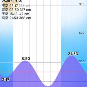台風10号(クローサ)、高潮が気になる。
