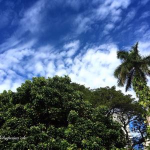 Today's Honolulu