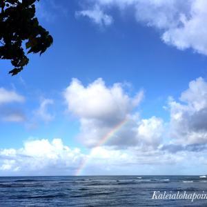 今日のハワイ