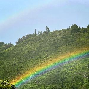 ハワイ、虹の毎日から一転・・・