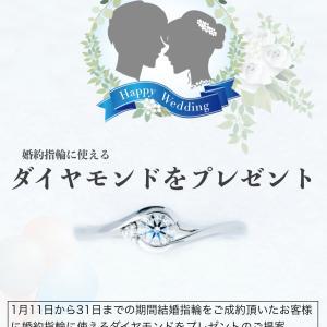 葉の柔らかさやウェーブが再現されたとても繊細なセットリング 婚約指輪 結婚指輪 雅元町店