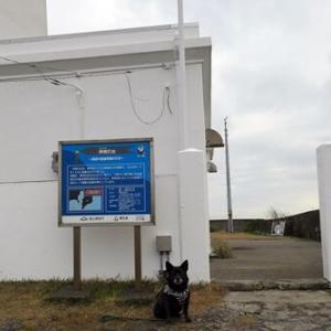 2019年12月内房と館山4-洲崎灯台と沖ノ島公園