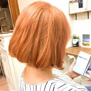 韓国タンバルモリカット&オレンジピンクカラー
