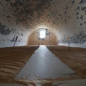 百年の歴史持つ食糧倉庫、備蓄小麦の入れ替え 中国・陝西省