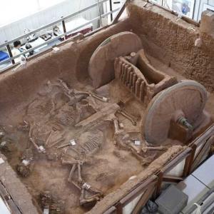2800年前の青銅製車輪の馬車を復元 陝西省考古研究院