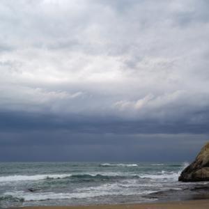 今日の海模様