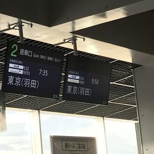 横浜遠征記 (2018シーズン回想録)